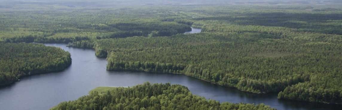 Explorez la Forêt Boréale 20 minutes