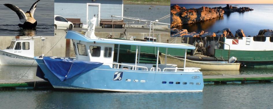 Navettes et excursions l'Île aux Basques