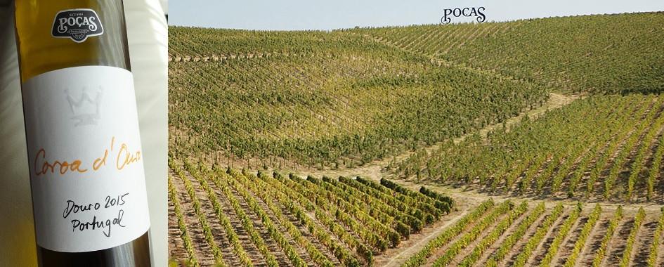 Sélection de bons vins
